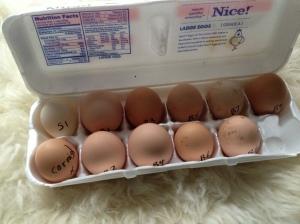 2-22-2013 Eggs Set