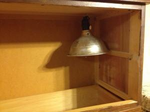 Brood lamp